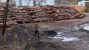 Still fra filmen - biomass plant